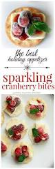 best 25 holiday appetizers ideas on pinterest christmas party