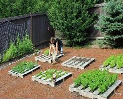 Pallet Gardening Ideas Raised Garden Beds Source Awesome Diy Pallet Raised Garden Ideas