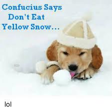 Confucius Says Meme - confucius says don t eat yellow snow lol meme on me me