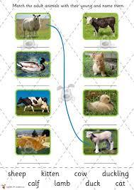printable animal activities teacher s pet farm animals and their babies cut stick