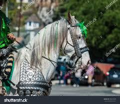 elegant costume white horse head st stock photo 598273568