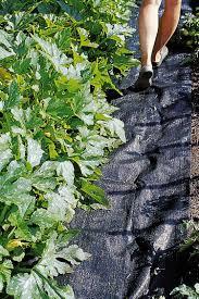 Creative Vegetable Gardens by Best Mulch For Vegetable Garden Gardening Ideas