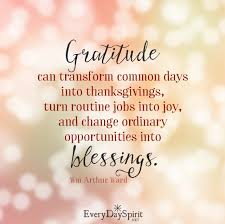 321 best attitude of gratitude images on thoughts