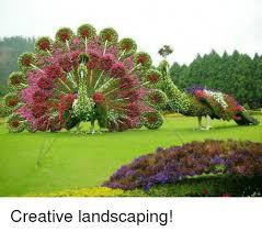 Landscaping Memes - creative landscaping meme on sizzle
