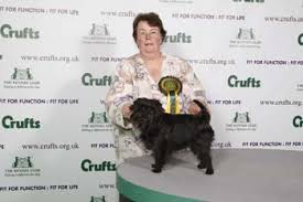 affenpinscher crufts 2016 crufts 2009 results