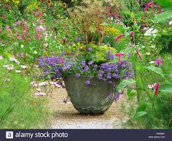 flowers in garden images planter of annuals including scaevola container flowers in garden