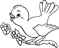 bird to color and spring birds coloring pages eson me