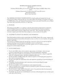 template for a memorandum