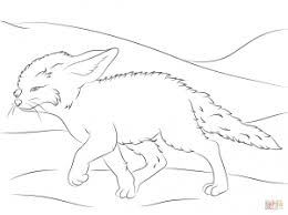 fennec fox babies for coloring page animal simple fennec fox