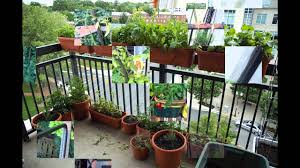 garden ideas kitchen garden in apartment youtube