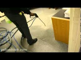 upholstery missoula mt green clean carpet machine carpet upholstery cleaning missoula
