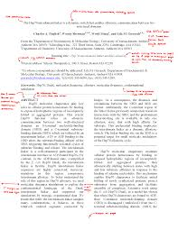 format of an abstract for a research paper instructions for authors