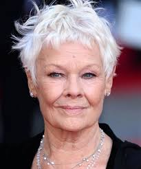 mark harmon haircut judi dench how to flaunt gray hair like a celebrity page 10