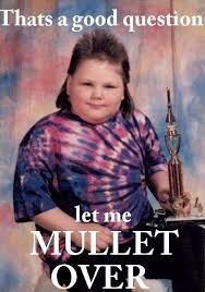 Question Meme - good question too much pun for 1 board pinterest mullets