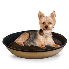 Petsmart Dog Bed Best 25 Petsmart Dog Training Ideas On Pinterest Petsmart Puppy