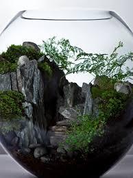 best 25 terrarium scene ideas on pinterest terrarium mini