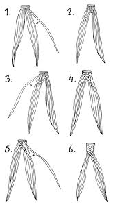 How To Grow A Box Haircut Fishtail Braid Looks Easier Said That Done Will Give It A Try