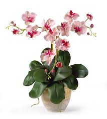 faux orchids faux mini phalaenopsis orchid floral arrangement reviews joss
