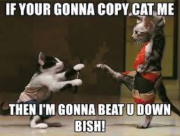 Copy Cat Meme - if your gonna copy cat me then i m gonna beat u down bish cat