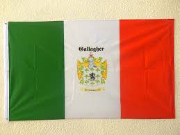 Flag Of Ireland Ireland Family Crest Flag 5 3 Full Coat Of Arms