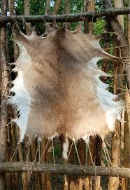 Deer Hide Tanning Companies 39 Best Textile Art Display Ideas Images On Pinterest Textile