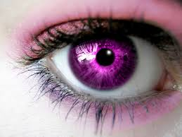 purple eye color ooc wolves of the apocalypse ooc roleplayer guild