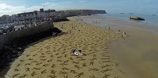 D Day Meme - day beach art