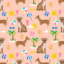chihuahuha girly tropical palm tree dogs tropical