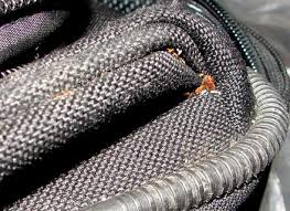 Do Bed Bugs Get On Dogs Do Bed Bugs Get On Dogs Dog Beds Gallery Images And Wallpapers Dog