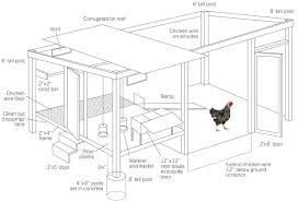 floor plan elevations and section of cooperative store chicken