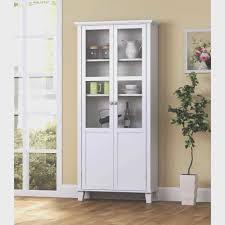 cabinet door storage trays ideas on storage cabinet