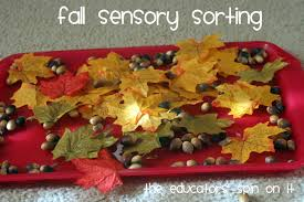 5 simple leaf activities the educators u0027 spin on it