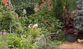 august garden shape style