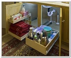 Under Bathroom Sink Storage Ideas by Under The Bathroom Sink Storage Solutions All Photos To Bathroom