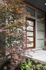 idee de jardin moderne érable du japon dans le jardin en 55 idées d u0027aménagement