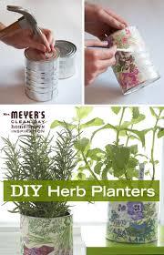 310 best herbs images on pinterest gardening herb gardening and