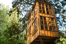 11 tree houses adults will absolutely adore homes and hues