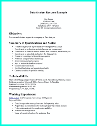 sle resume for business analyst profile resumes data analyst resume will describe your professional profile