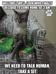 Funny Animal Pictures Memes - 30 funny animal captions part 23 30 pics amazing creatures