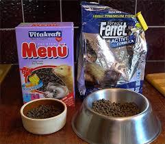 urban u0027s blog what do ferrets eat