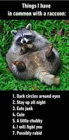 funny pictures of the day 40 pics funny pictures pinterest