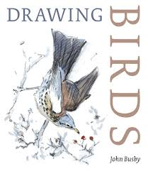 drawing birds art books reviewed