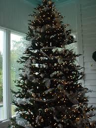 黒い虹blackrainbow 黒い虹 christmas trees around the world