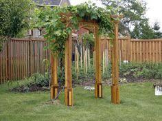Grape Arbor Designs Pictures