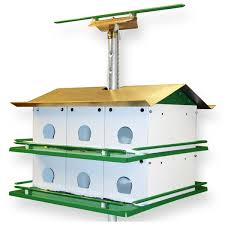 cool bird house plans purple martin bird house safety system with pole yard envy