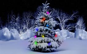 christmas tree with snow beautiful christmas tree snows happy holidays