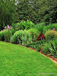 episode 305 organic lawn care growing a greener world