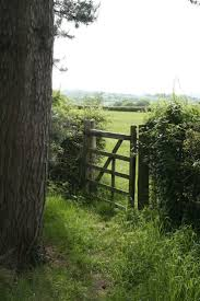 445 best garden gate images on pinterest garden doors garden
