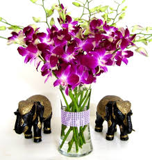 purple orchids purple dendrobium orchids 10 stems orchid with