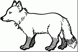 fabulous fox kids coloring page with fox coloring pages